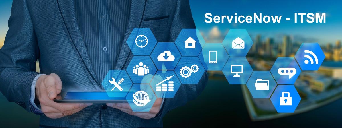 ITSM ServiceNow Services