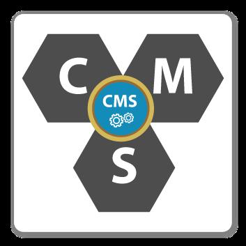 CMS Technology, Fidel