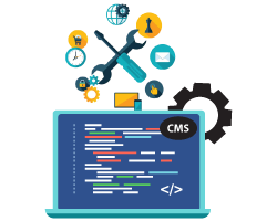 CMS Support and Maintenance