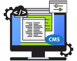 Custom CMS Development, Fidel